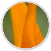 Plant Abstract II Round Beach Towel