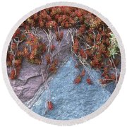 Plants On The Rock Two  Round Beach Towel