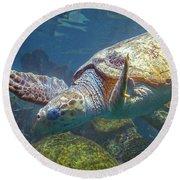 Playful Green Sea Turtle Round Beach Towel