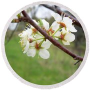 Plum Blossoms In Spring Round Beach Towel