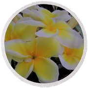 Plumeria In Yellow 4 Round Beach Towel
