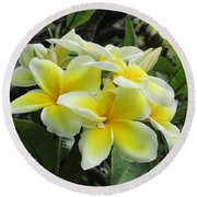 Plumeria In Yellow  5 Round Beach Towel
