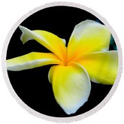 Plumeria In Yellow Round Beach Towel