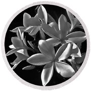 Plumeria Proper Evening Round Beach Towel
