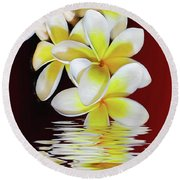 Plumeria Reflections By Kaye Menner Round Beach Towel
