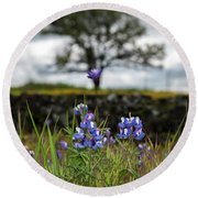 Pocket Of Lupines Round Beach Towel
