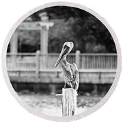 Point Clear Alabama Brown Pelican - Bw Round Beach Towel