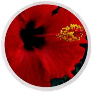 Poison Passion And Seduction Round Beach Towel