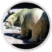 Polar Bear 2 Round Beach Towel