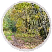 Polish Forest 1 Round Beach Towel