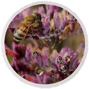 Pollen Bees Round Beach Towel