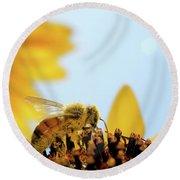 Pollen-coated Honey Bee On A Sunflower Round Beach Towel