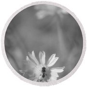 Pollination  Round Beach Towel
