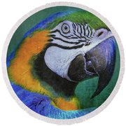 Polly Who Round Beach Towel