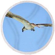 Ponce Osprey 3 Round Beach Towel