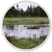 Pond And Swans Round Beach Towel