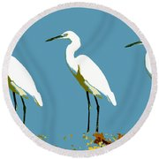 Pop Egrets Round Beach Towel