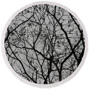Popcorn Tree Budding Round Beach Towel