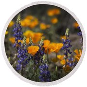 Poppies And Lupines  Round Beach Towel
