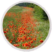 Poppies Awash Round Beach Towel