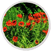 Poppies Flowerbed Round Beach Towel