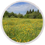 Poppies Forever Round Beach Towel