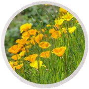 Poppies Hillside Meadow Landscape 19 Poppy Flowers Art Prints Baslee Troutman Round Beach Towel