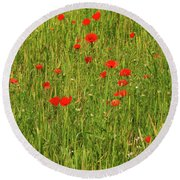 Poppies In A Wheat Field Round Beach Towel