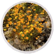 Poppies On The Rocks Round Beach Towel
