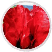 Poppies Plus Round Beach Towel