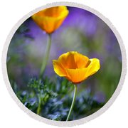Poppy Ballet Round Beach Towel