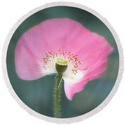 Poppy Fan Round Beach Towel