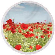 Poppy Flowers Field Nature Spring Scene Round Beach Towel