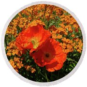Poppy Glories Round Beach Towel