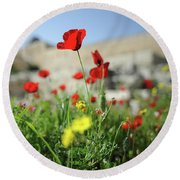 Red Poppy Flower On The Meadow Round Beach Towel