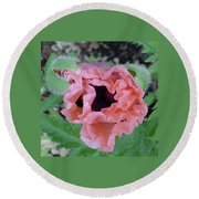 Poppy Opening - 2 Round Beach Towel