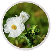 Poppy Wildflower Round Beach Towel