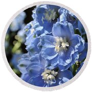 Portrait Blue Delphinium 114 Round Beach Towel