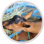 Portrait Of A Goat 2 Round Beach Towel