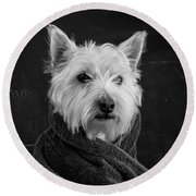 Portrait Of A Westie Dog Round Beach Towel