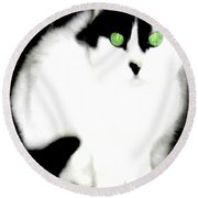 Portrait Of A White Cat Round Beach Towel