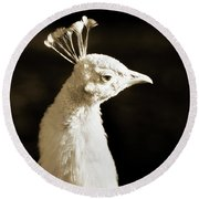 Portrait Of A White Peacock Round Beach Towel