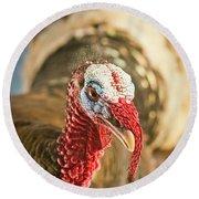 Portrait Of A Wild Turkey Round Beach Towel