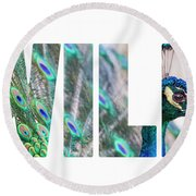 Portrait Of Beautiful Peacock With Open Tail Round Beach Towel