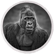 Portrait Of King Kongs Cousin IIi Round Beach Towel
