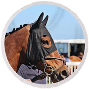 Portrait Of The Horse In The Hood Round Beach Towel