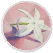 Portrait Of The Jasmine Flower Round Beach Towel