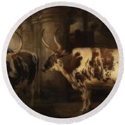 Portrait Of Two Oxen - The Property Of The Earl Of Powis Round Beach Towel
