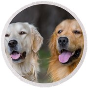 Portrait Of Two Young Beauty Dogs Round Beach Towel