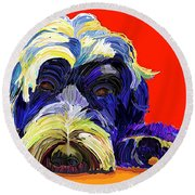 Portugese Water Dog 1 Round Beach Towel